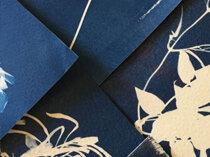 Cyanotype printing with Raimond de Weerdt